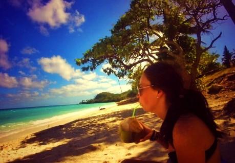 Fresh coconuts on Lifou